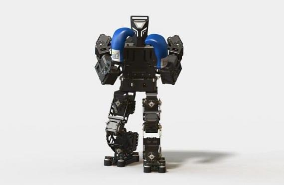 CLoudrobot