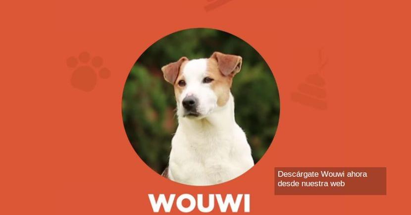 Android y tu mascota: Hoy Wuowi el Facebook para mascotas