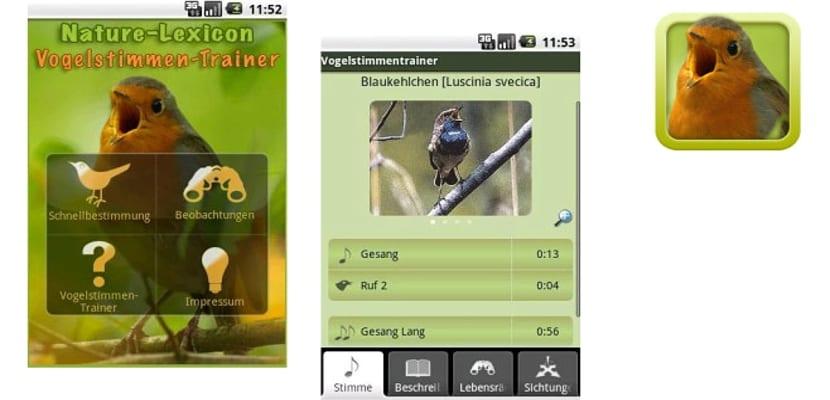 entrenador de pájaros en Android