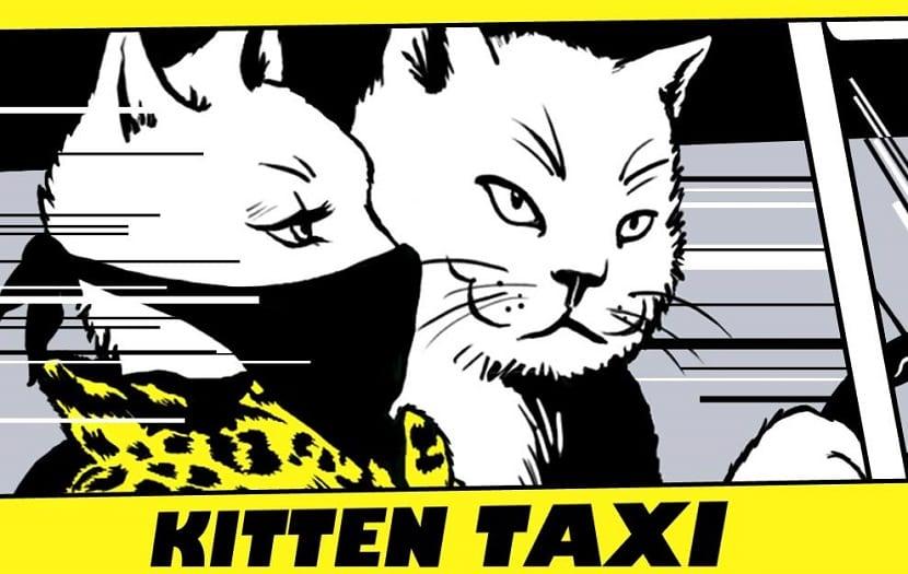 Kitten Taxi