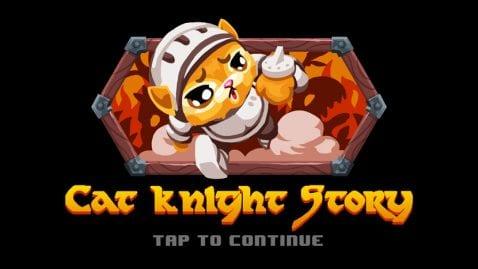 Cat Knight Story