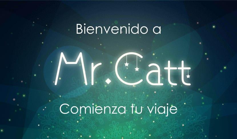 Mr.Catt