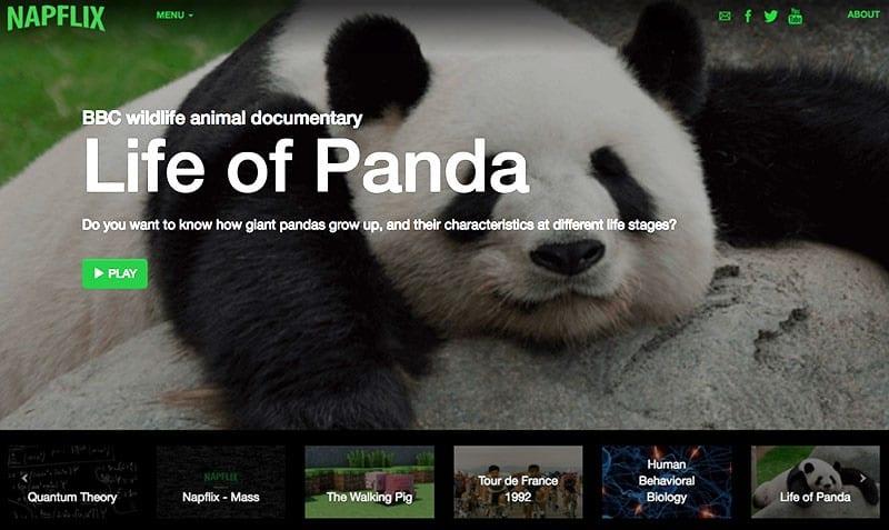 Napflix panda