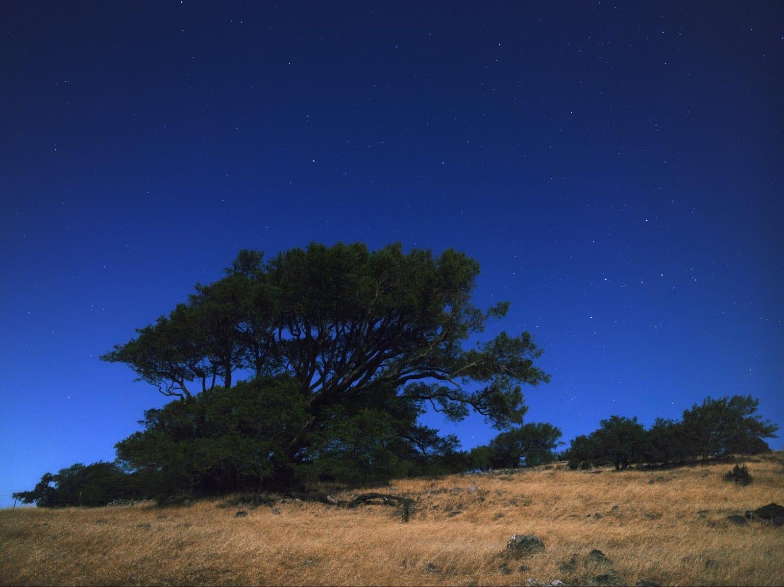 Foto nocturna tomada con el Google Pixel