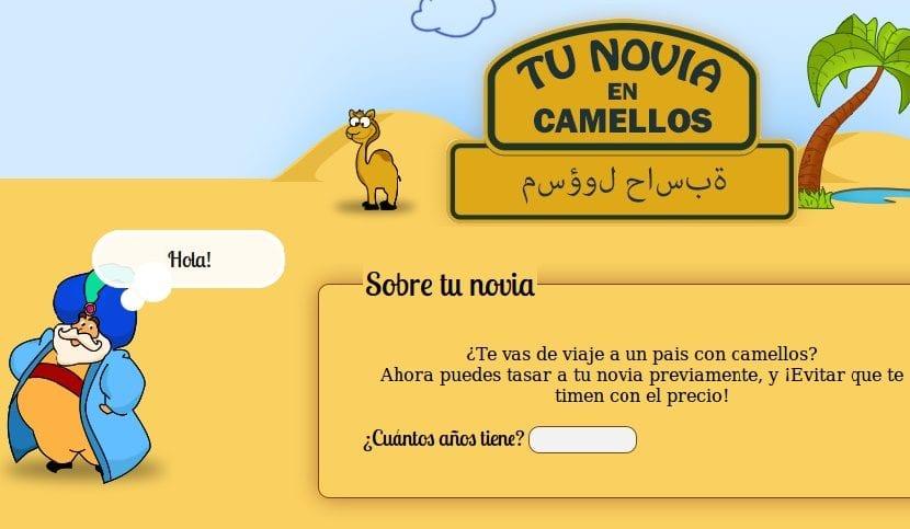 Tu novia en camellos