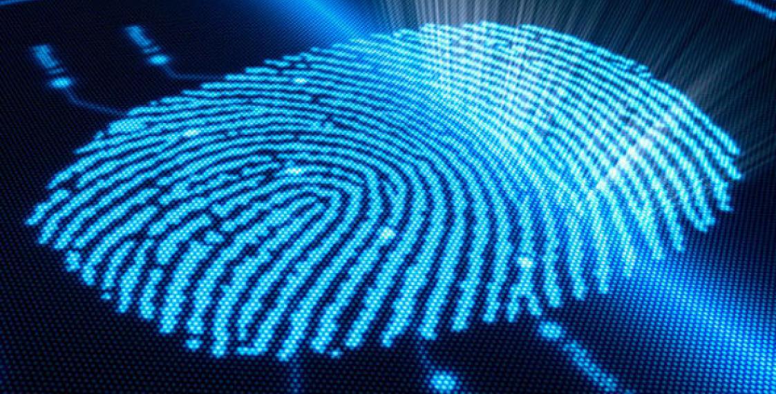 Sensor de huellas dactilares integrado en la pantalla de un terminal Android