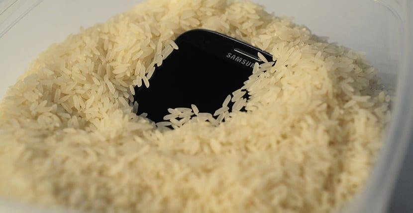 arroz-smartphones