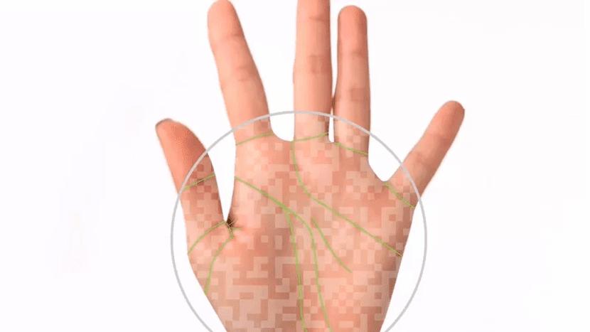 PalmID reconoce la palma de la mano