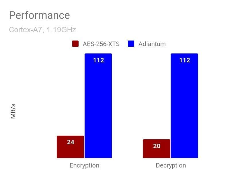 Adiantum rendimiento