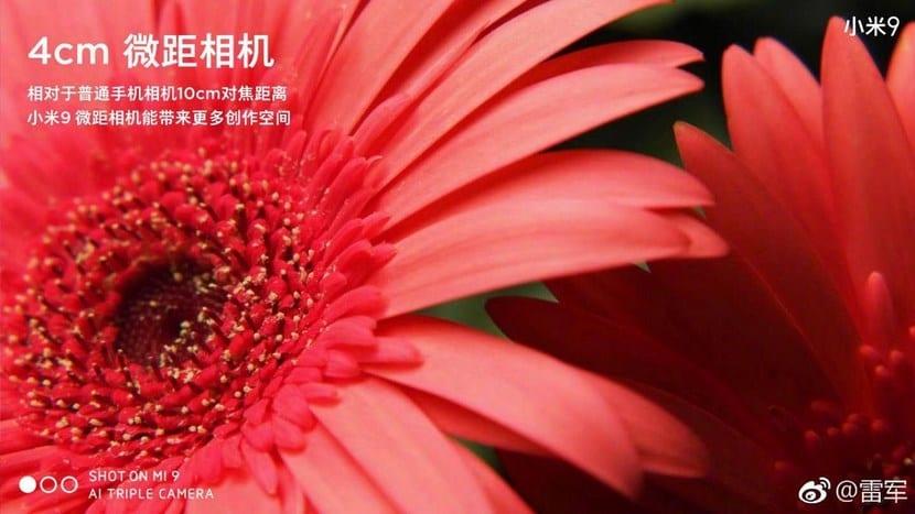 Foto con la Cámara del Xiaomi Mi 9