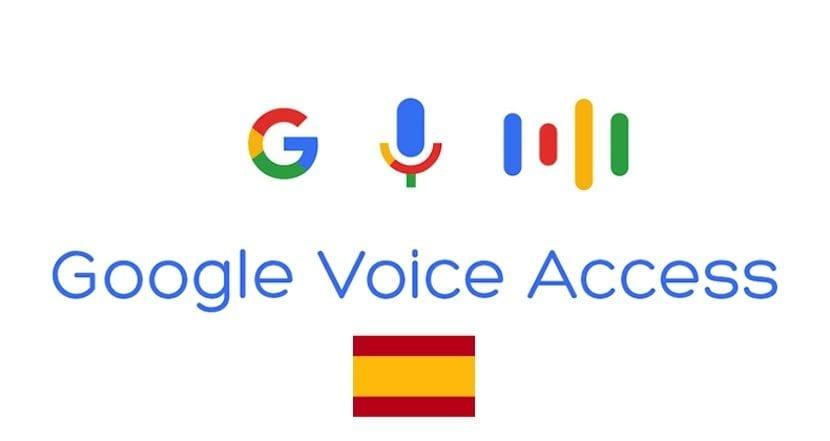 Google Voice Access Español