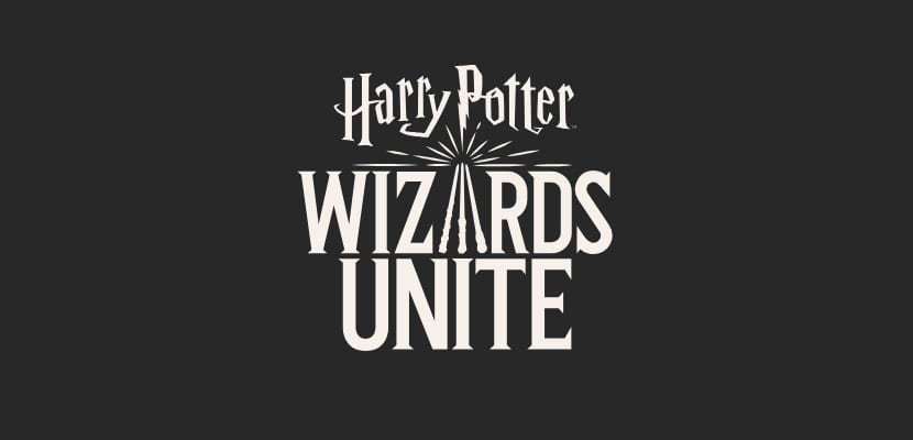 Harry Potter Wizards