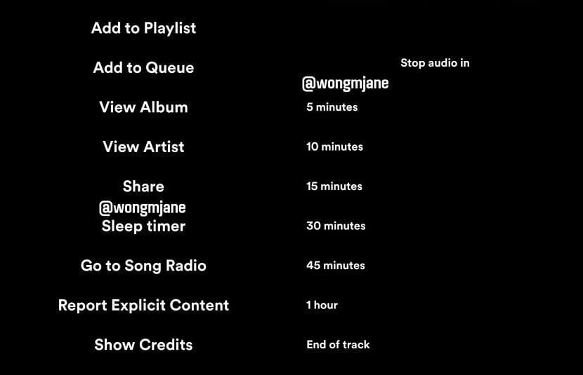 Spotify temporizador