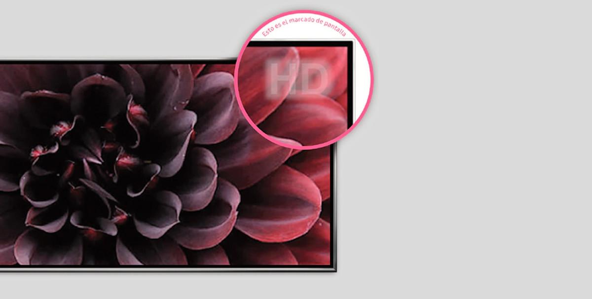 marcas pantalla televisor OLED