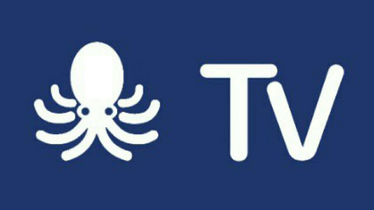logo de OctoStream