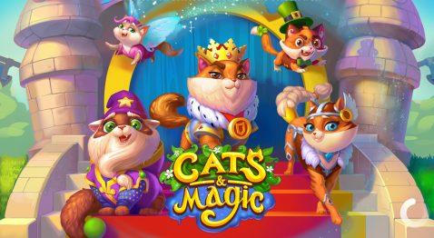 Cats & Magic