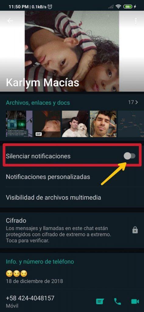 Silenciar notificaciones de WhatsApp desde el perfil del contacto o grupo