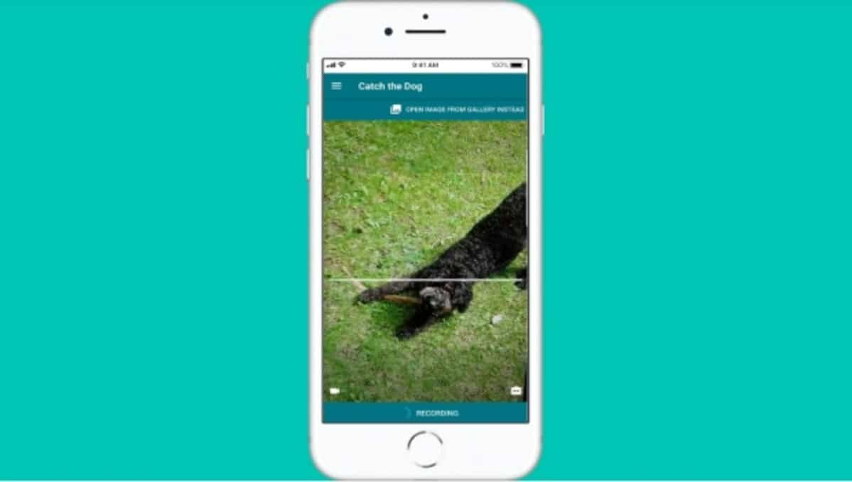 App raza perro